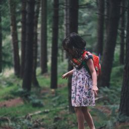 What Does it Mean to Be a 'Wild Child'?