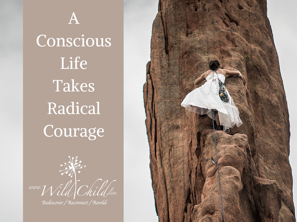 A Conscious Life Takes Radical Courage
