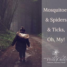 Mosquitoes and Spiders and Ticks, Oh, My!